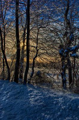 Ringo Photograph - Let The Sunrise by Ryan Crane