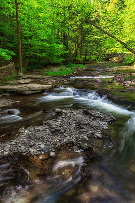 Wolf Creek Photograph - Letchworth Wolf Creek by Mark Papke