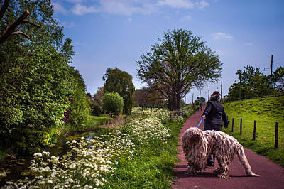 Spring Scenes Photograph - Lets Go Home by Jenny Rainbow