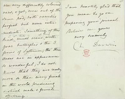 Letter Of Charles Darwin Print by British Library