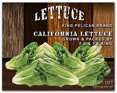 Lettuce Patch Print by Marvin Blaine
