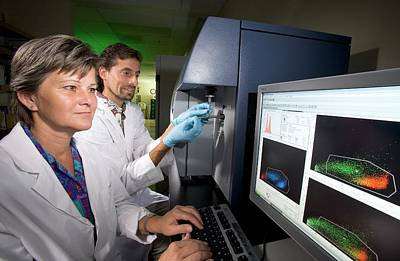 White Lab Photograph - Leukaemia Phytochemicals Research by Peggy Greb/us Department Of Agriculture
