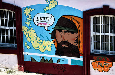 Liberte Photograph - Liberte In Chile by John Rizzuto