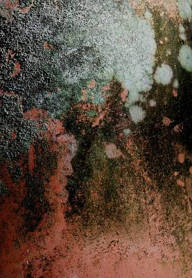 Lichen Abstract 2 Print by Denise Clark
