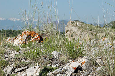Gallatin River Photograph - Lichen Covered Rocks At Missouri Headwaters State Park Montana by Bruce Gourley