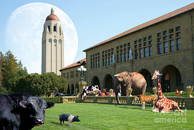 Stanford Digital Art - Life Down On The Farm Under The Moon Stanford University California Dsc685 by Wingsdomain Art and Photography