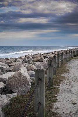 Life On The Rocks Print by Chris Brehmer Photography