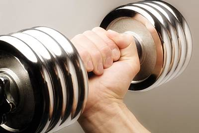 Lifting Weights Print by Chris and Kate Knorr