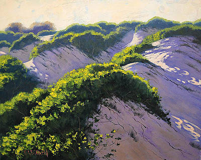 Sand Dunes Painting - Light Across The Dunes by Graham Gercken