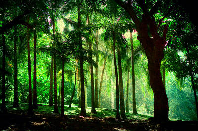 Light In The Jungles. Viridian Greens. Mauritius Print by Jenny Rainbow