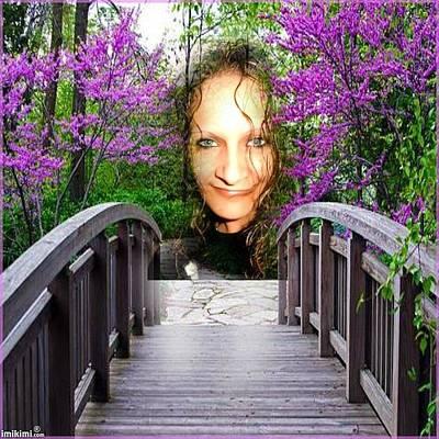 Photograph - Lilac Garden by Annette Abbott