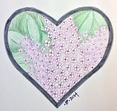 Lilac Drawing - Lilac Mv 20140827 by Barbara Bellissimo