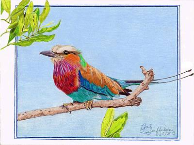 Lilac Drawing - Lilac Roller by Gail Seufferlein