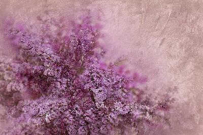 Silks Mixed Media - Lilac Splash by Svetlana Sewell