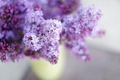 Lilacs In A Vase Print by Rebecca Cozart