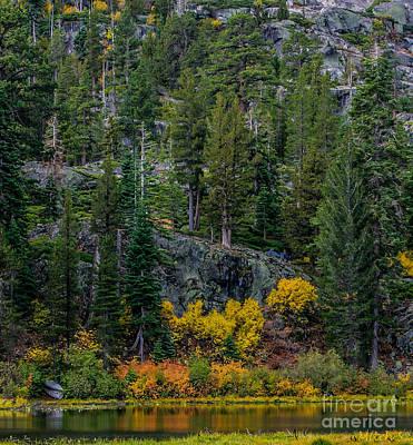 Lily Lake Autumn Print by Mitch Shindelbower