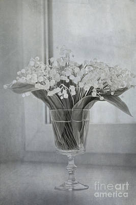 Corporate Art Photograph - Lily Of The Valley by Elena Nosyreva