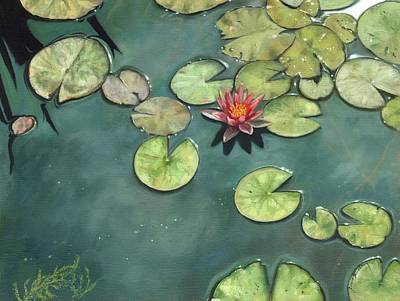 Lily Pond Print by David Stribbling