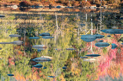 Rural Scenes Photograph - Lily Pond Reflections-white Mountains Nh by Thomas Schoeller