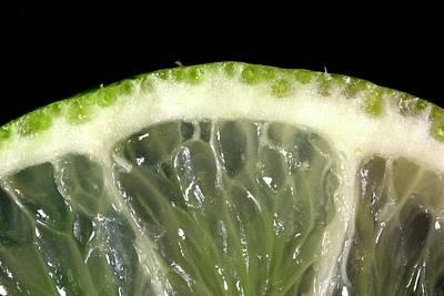 Lime Slice Print by Thomas Fester