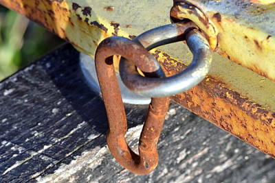 Latch Hook Photograph - Linked by Kim Hymes