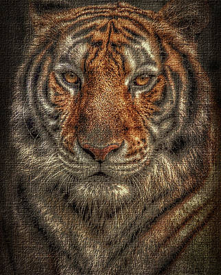 House Pet Digital Art - Lion Canvas Portrait by Yury Malkov