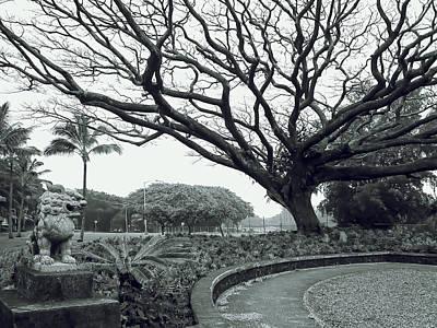 Hawaii Dog Photograph - Lion Dog And Tree - Liliuokalani Park - Hawaii by Daniel Hagerman
