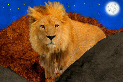 Autumn Painting - Lion In The Evening by Bruce Nutting