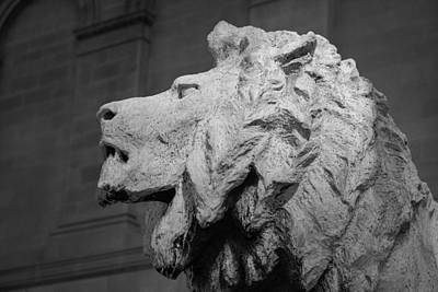 Lion Of The Art Institute Chicago B W Print by Steve Gadomski