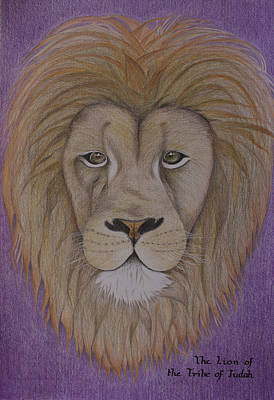 Revelation Drawing - Lion Of The Tribe Of Judah by Carol De Bruyn