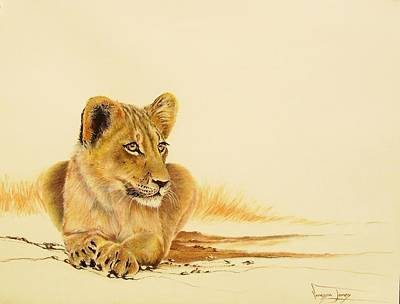 Painting - Lion Youngster by Vanessa Lomas