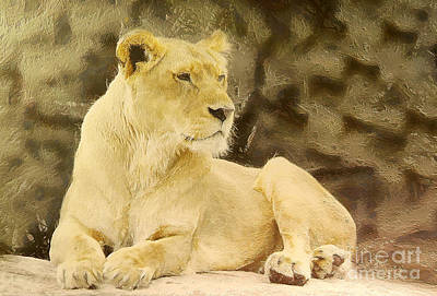 Growling Painting - Lioness Lying by Odon Czintos