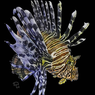 Scratchboard Painting - Lionfish 1 by Sydne Spencer