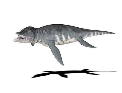 Paleozoology Photograph - Liopleurodon Dinosaur by Friedrich Saurer