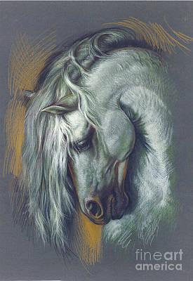 Sad Digital Art - Lipizzan Horse by Zorina Baldescu