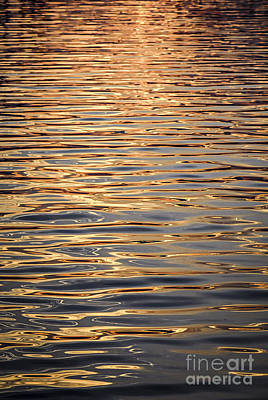 Fluid Photograph - Liquid Gold by Elena Elisseeva