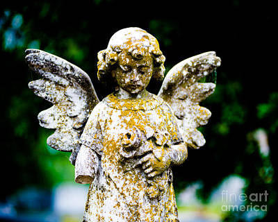 Little Angel Print by Sonja Quintero