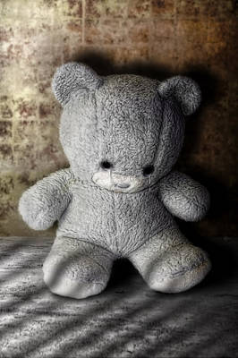 Teddie Photograph - Little Bear Stuck With Sad Look by Joel Vieira
