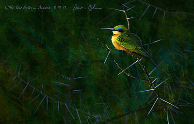 Bees Digital Art - Little Bee Eater by Aaron Blaise
