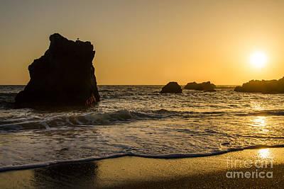 Sun Photograph - Little Bird by CML Brown