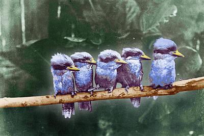 Finch Mixed Media - Little Birds On A Branch by Tony Rubino