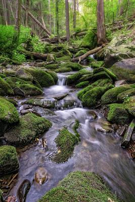 Pa State Parks Photograph - Little Bush Kill by Rick Berk