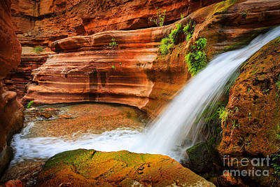 Slickrock Photograph - Little Deer Creek Fall by Inge Johnsson
