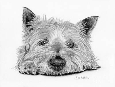 White Drawing - Little Dog by Sarah Batalka