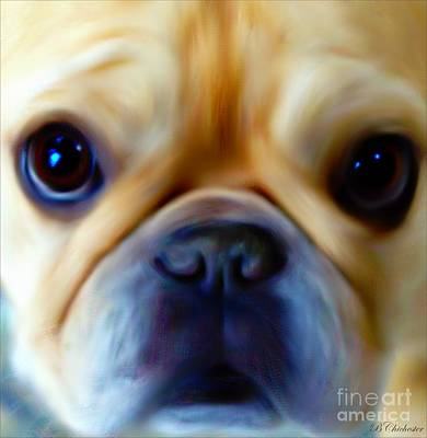 Pedigree Art Digital Art - Little Frenchie Face by Barbara Chichester