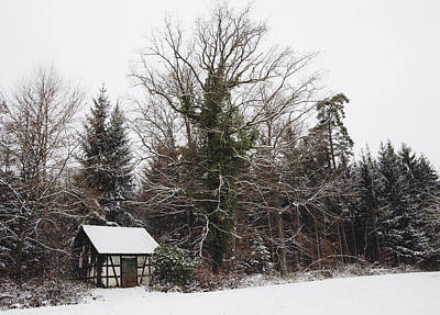 Little Hood And Beautiful Trees In Winter Print by Matthias Hauser