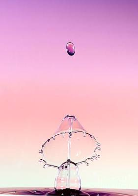 Water Drops Photograph - Little Lampshade by Heidi Southworth