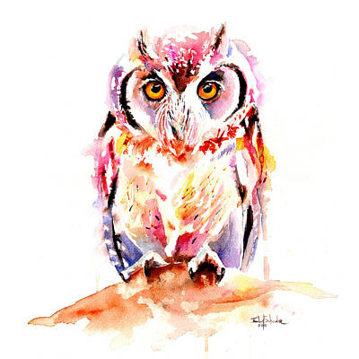 Brush.media Drawing - Little Owl by Isabel Salvador