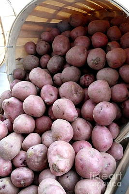 Little Red Potatoes Original by Betsy Cotton