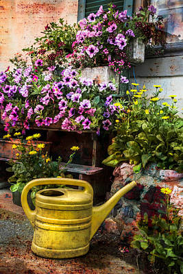Garden Flowers Photograph - Little Swiss Garden by Debra and Dave Vanderlaan